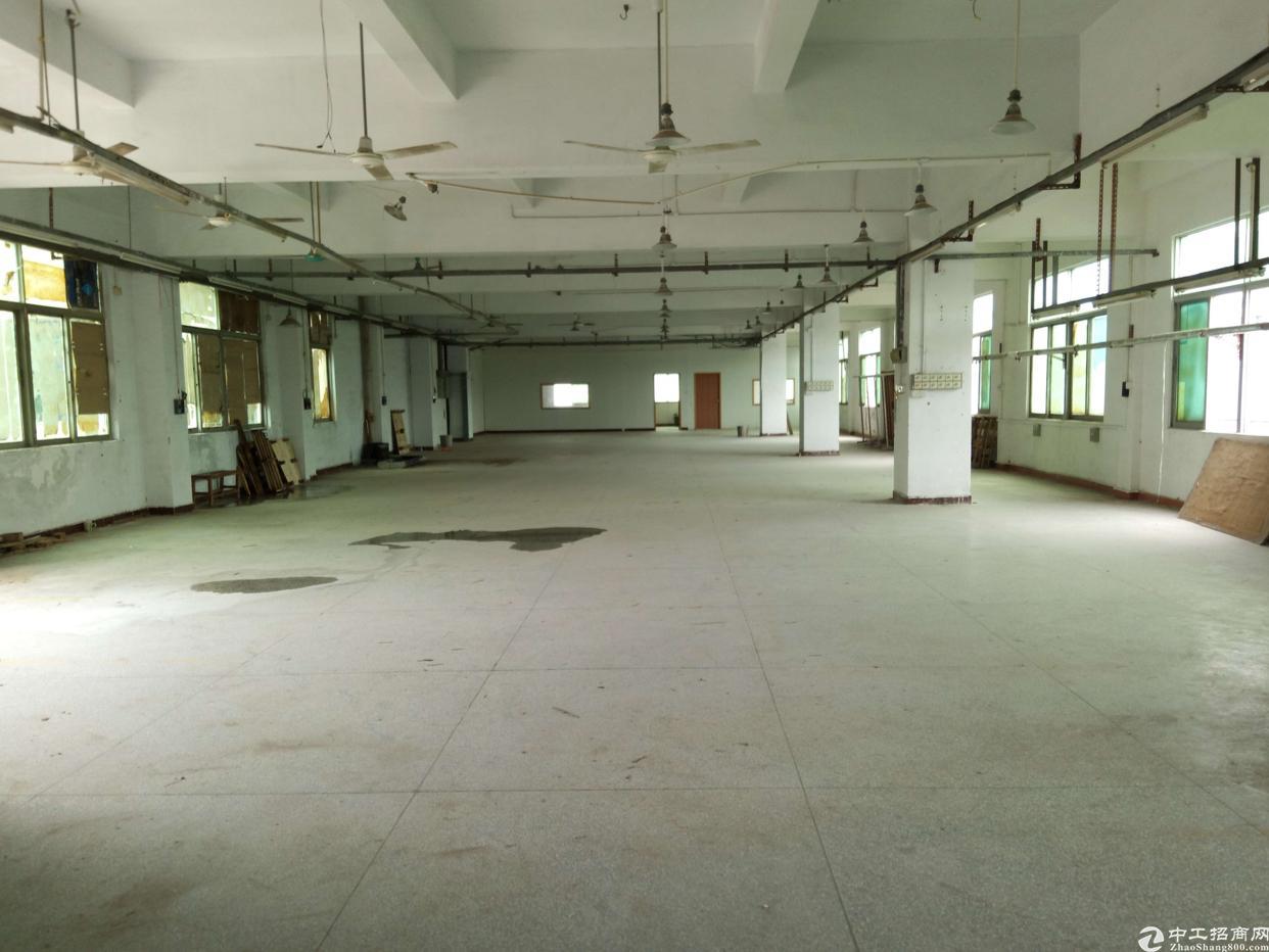 虎门沿江高速出口附近独院厂房3500平方、精装修、空地超大-图3