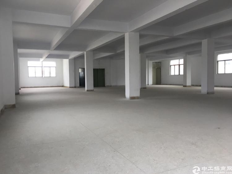 坑梓老坑工业区新出性价比高1200平厂房