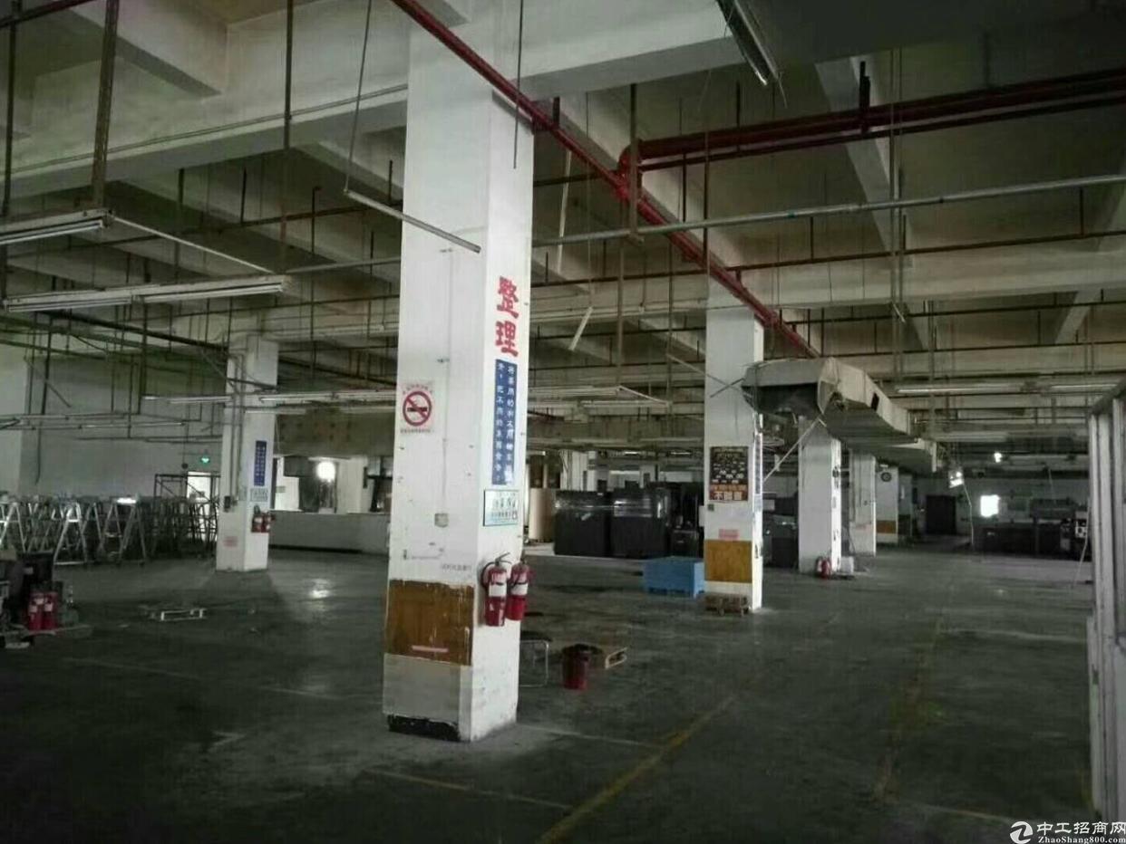 大岭山镇标准独院厂房2层6000平方出租