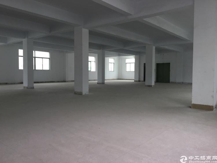 坪山区坑梓独门独院厂房面积4500平米宿舍1800平米