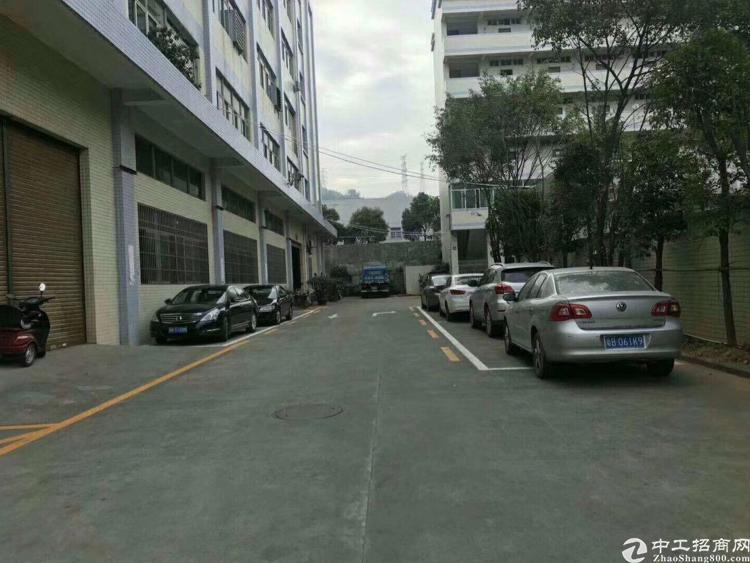 公明田寮南光高速附近5楼900平方精装修厂房