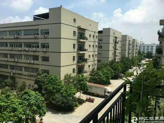 东莞清溪原房东高端大气独院厂房70000平方招租-图4
