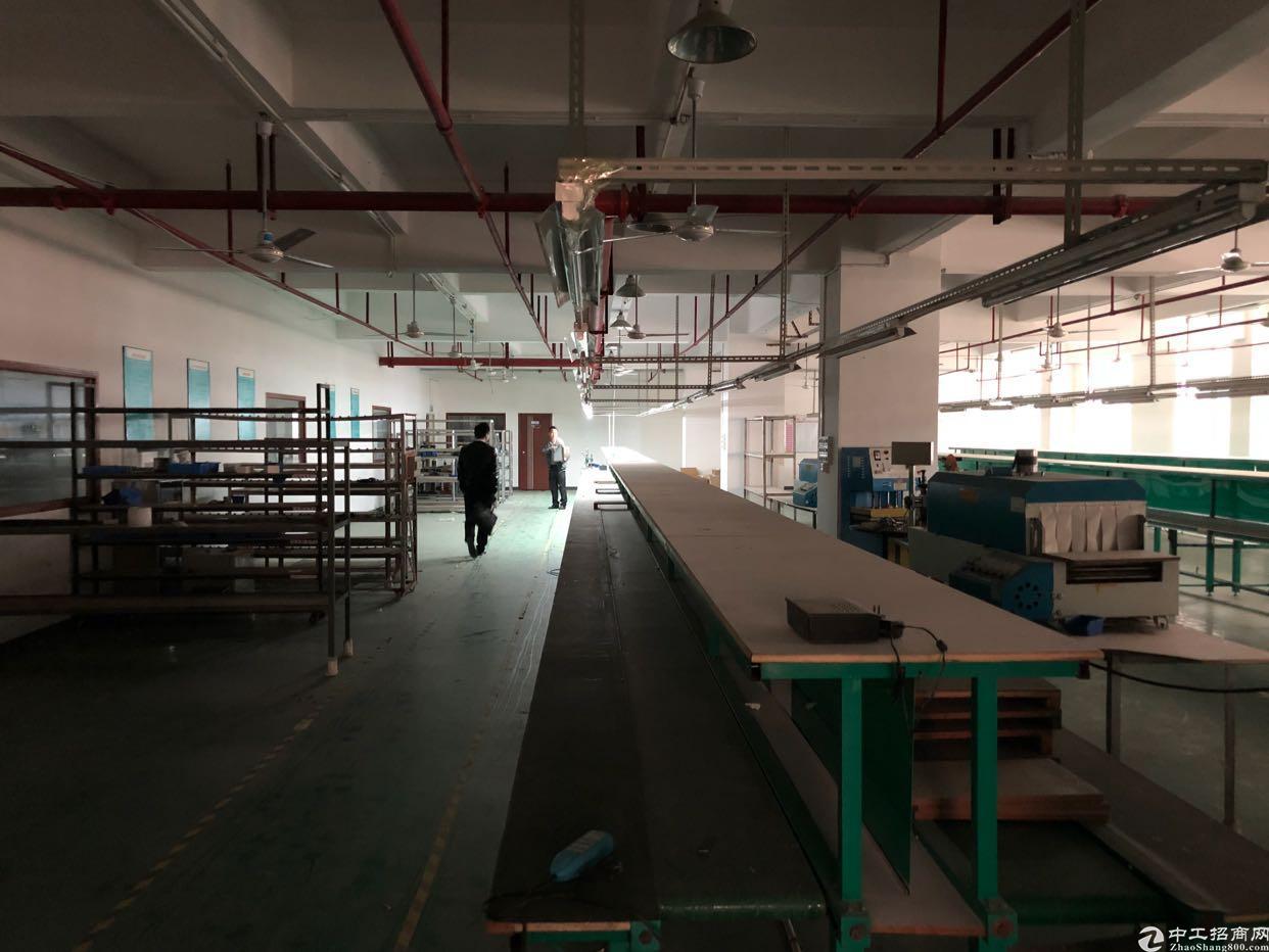 福永沿江高速出口2000平米带装修厂房-图5