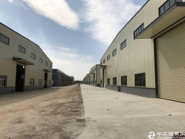 新建钢构厂房招租,可分租