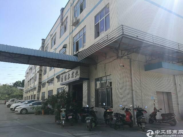 松岗村委厂房一楼1000㎡火爆招租