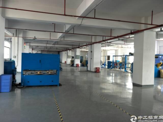 长安镇安路旁新出1500平米精装修厂房-图6