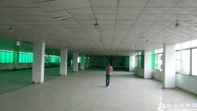平湖富民工业区村委独院厂房6400平方米出租-图7