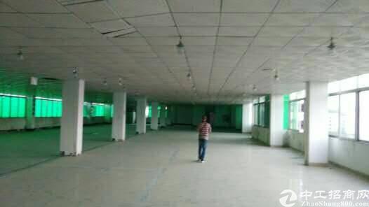 平湖富民工业区村委独院厂房6400平方米出租-图8