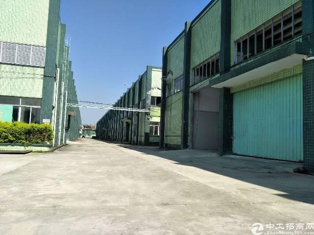 龙岗龙东新出滴水10米独门独院钢构厂房