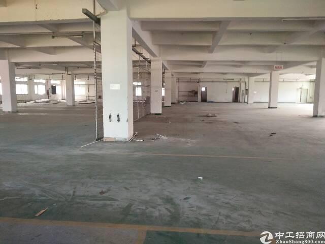 虎门沿江高速出入口新出三楼分租1200平方,带现成办公室装修
