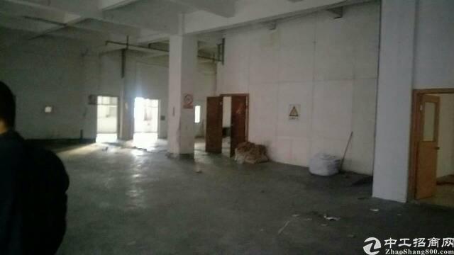 新出标准一楼厂房650+400平方