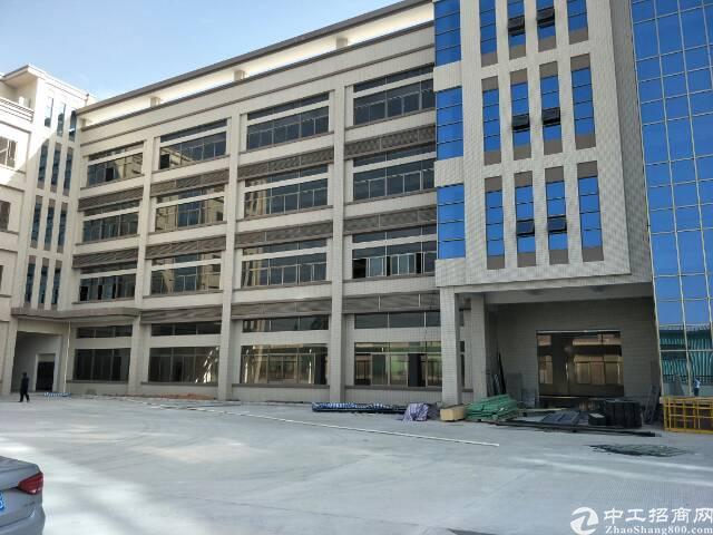 企石镇原房东新建厂房4层12000平方出租