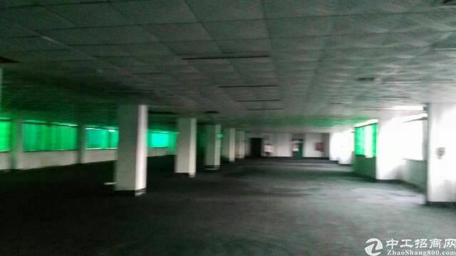 平湖富民工业区村委独院厂房6400平方米出租-图3