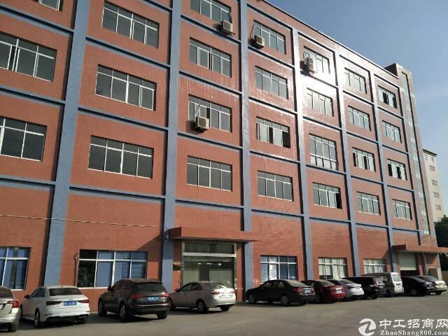 清溪主马路新出二楼3300平可分租厂房
