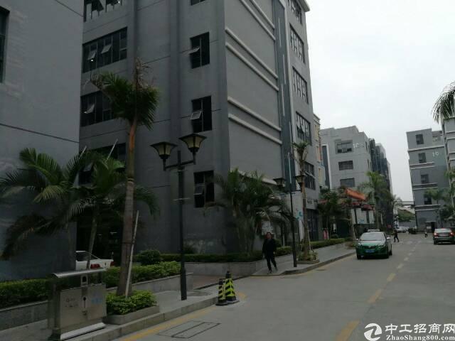 福永凤凰107国道新出带装修厂房3200平米一整层-图3