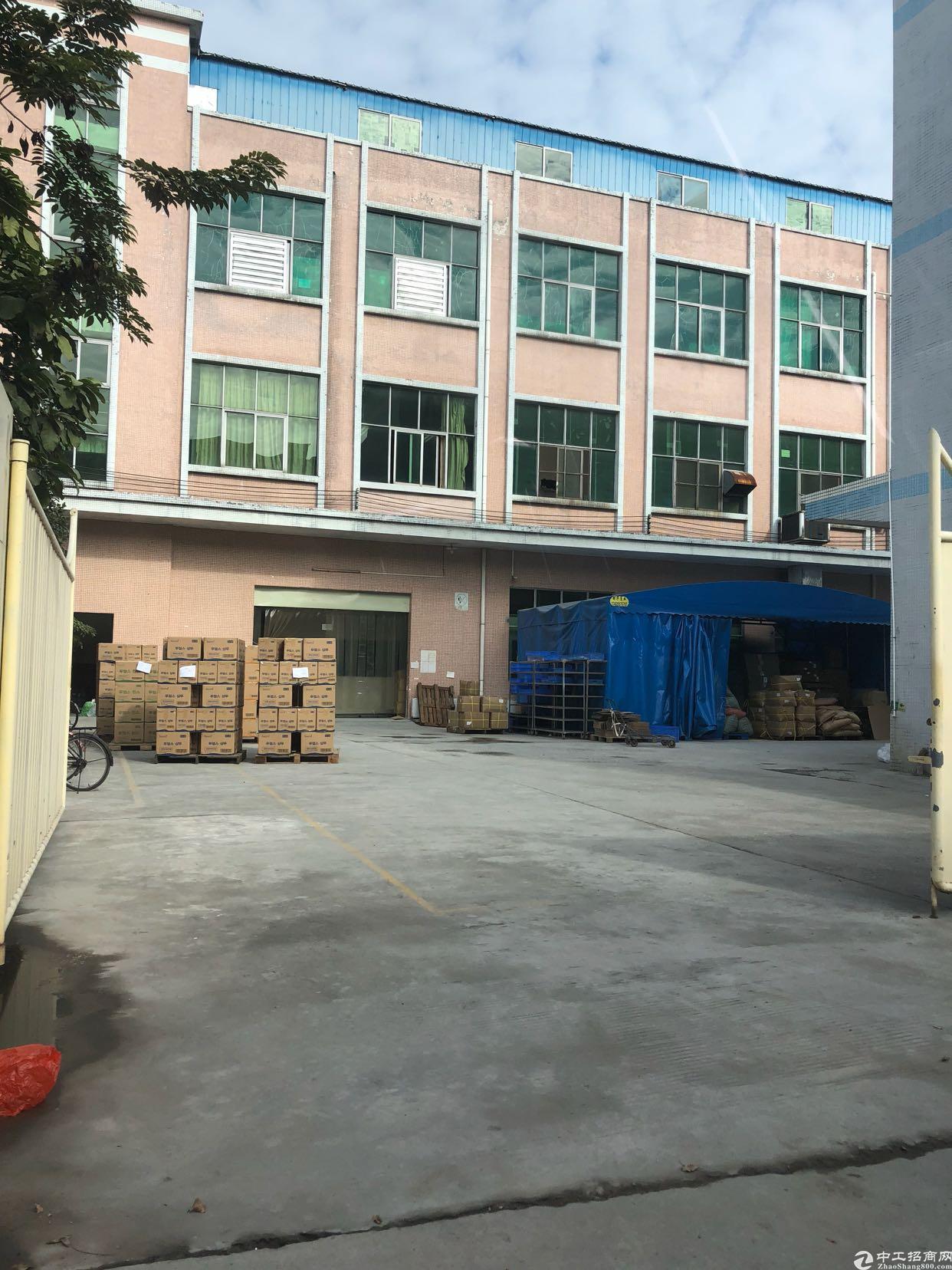 万江石美标准楼房1F1000平米,办公300平米,宿舍6间