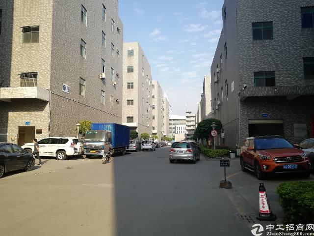 公明镇李松朗新出楼上480平方带精装修招租-图7