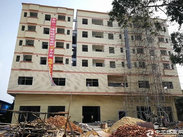 塘厦镇建筑4000平永久性楼房出售