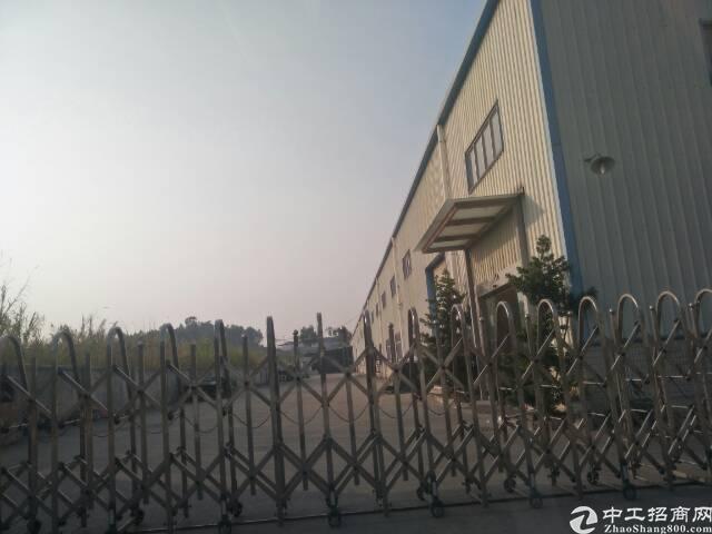 光明新区楼村新出九米高的钢构7100平方出租