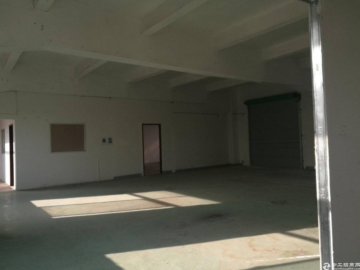 横岗六约新出独院厂房2800平,12块招租-图2