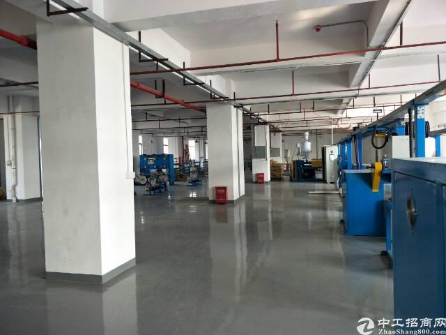 长安镇安路旁新出1500平米精装修厂房-图3