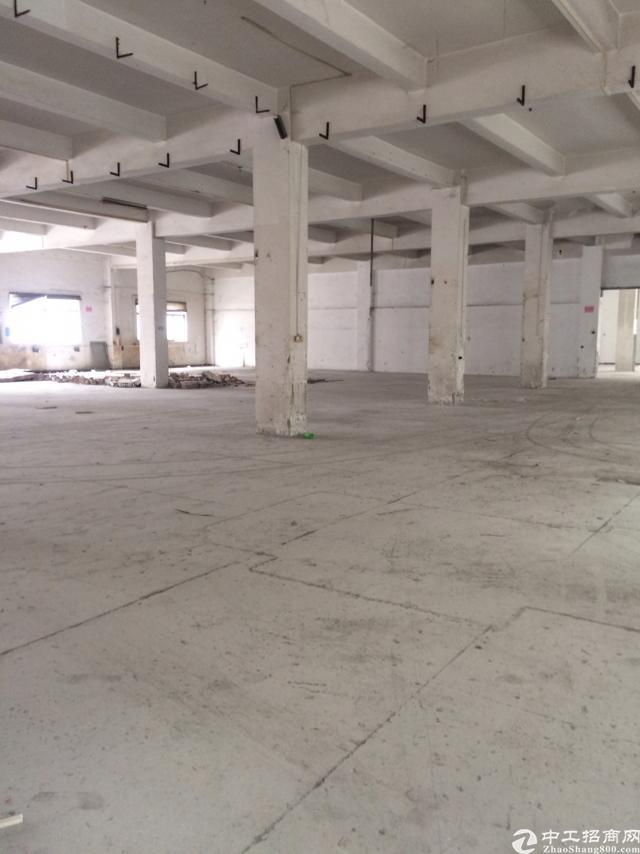 企石镇标准独院厂房出租三层5400平方-图4