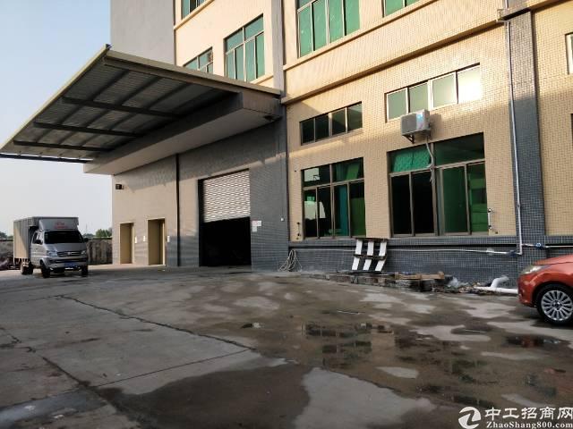 企石镇新岀标准厂房一楼1500平方高度6米