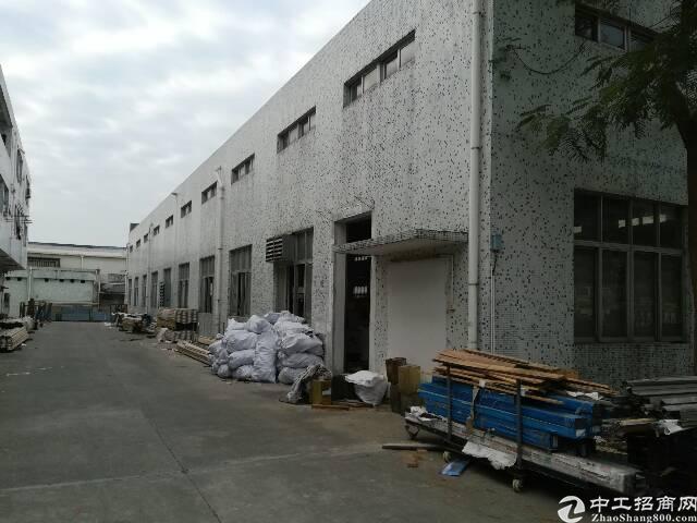 单一层,层高7米1200平方厂房出租