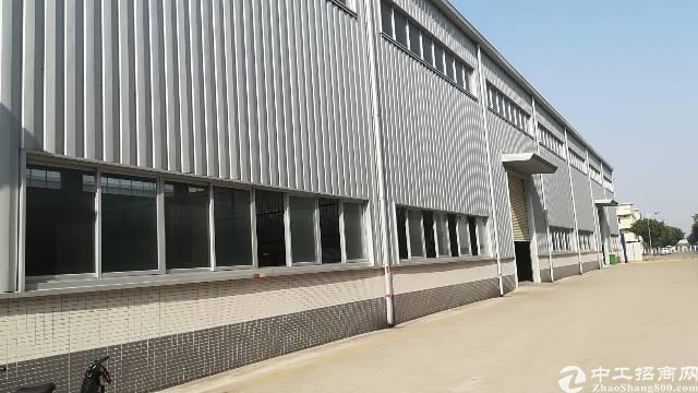 厚街主干道边大润发附近原房东单一层钢构厂房