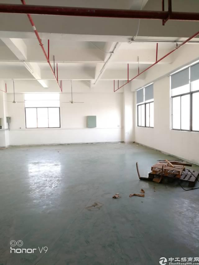 公明楼上400平米带装修招租-图3