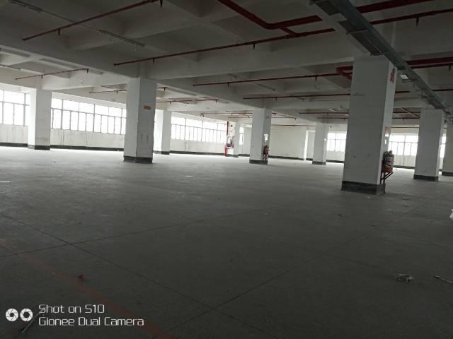长安夏岗全新厂房招租,6000平方米出租