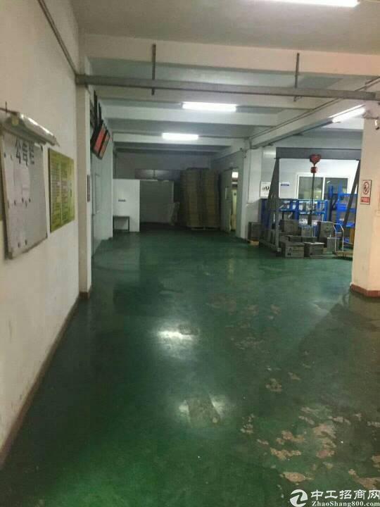 新出独门独院厂房一楼面积1350平方。