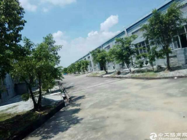 广州增城新塘独院单一层厂房8600平方招租可分租-图5