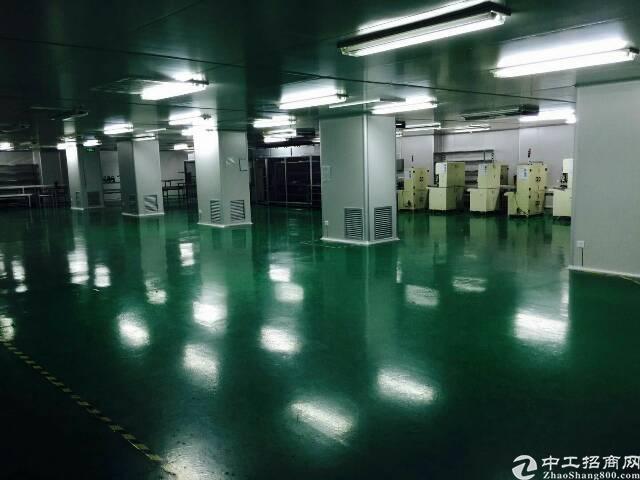 清溪镇新出两证齐全红本厂房26000平方出租-图5