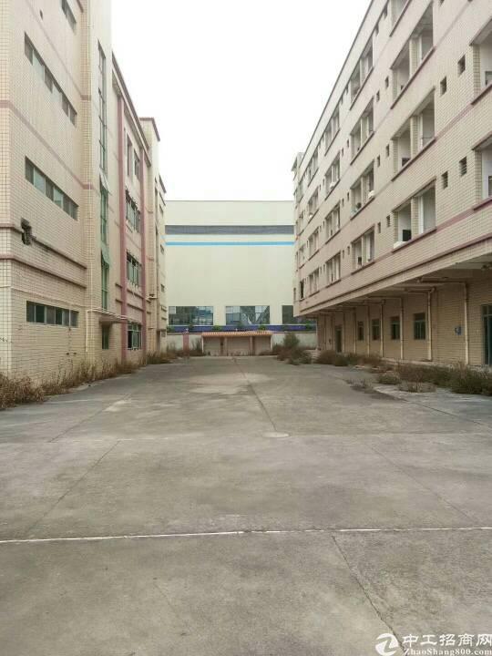 清溪镇新出独栋厂房8600平方一楼高6.5米-图3