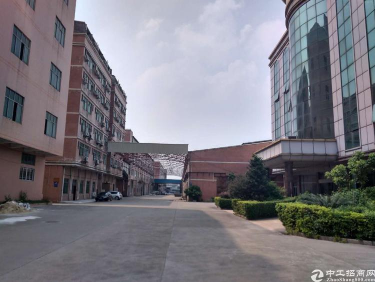 新塘大道旁标准厂房4000平厂房出租
