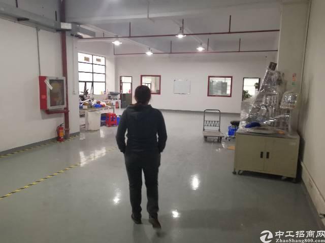 公明镇李松朗新出楼上480平方带精装修招租-图4