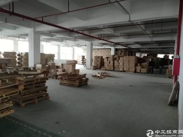 凤岗镇黄洞新出楼上2200平方一手直租