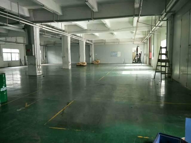 龙岗宝龙独院厂房6000平方带精装修,1楼6米高-图3