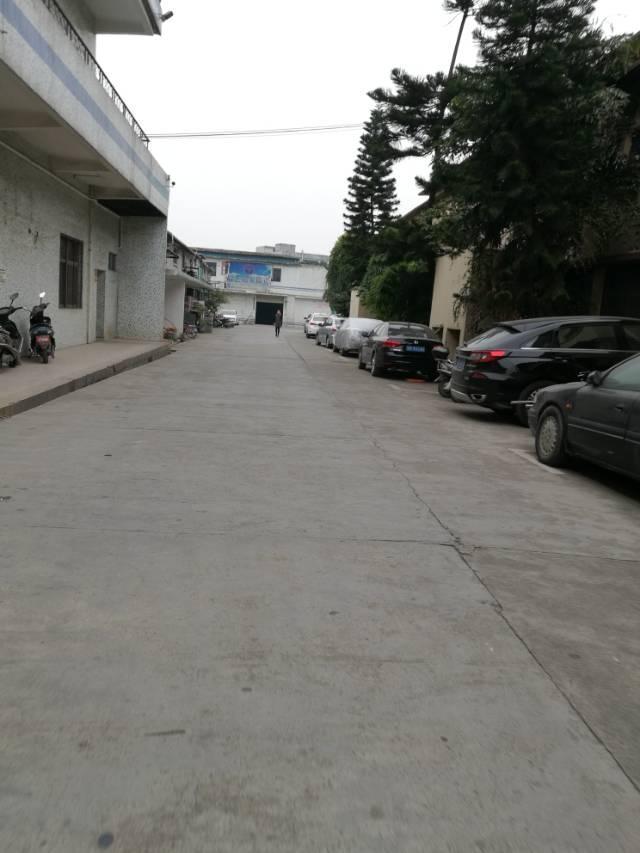 沙井107国道边新出一楼450平方标准厂房七米高