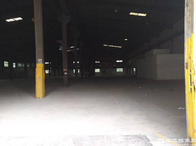 坂田杨美地铁站附近新出独门独院10000平米钢构厂房-图3