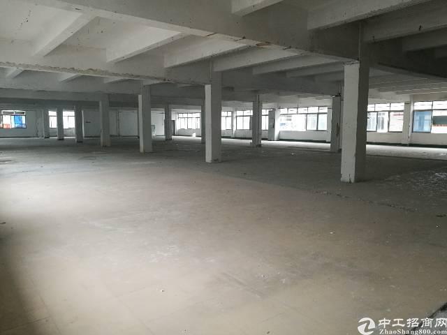 西乡钟屋物流园区新空出2000平米仓库厂房
