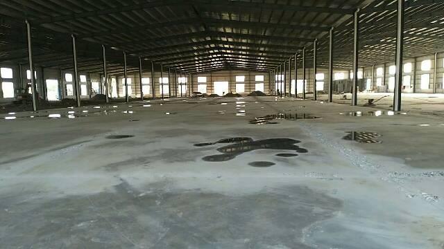 广州增城新塘独院单一层厂房8600平方招租可分租-图2