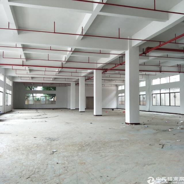 企石永发工业区新出标准厂房一楼3000平方出租(水电齐全)