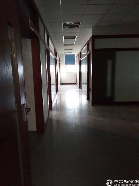 公明将石新出独院三层厂房6000平米-图8