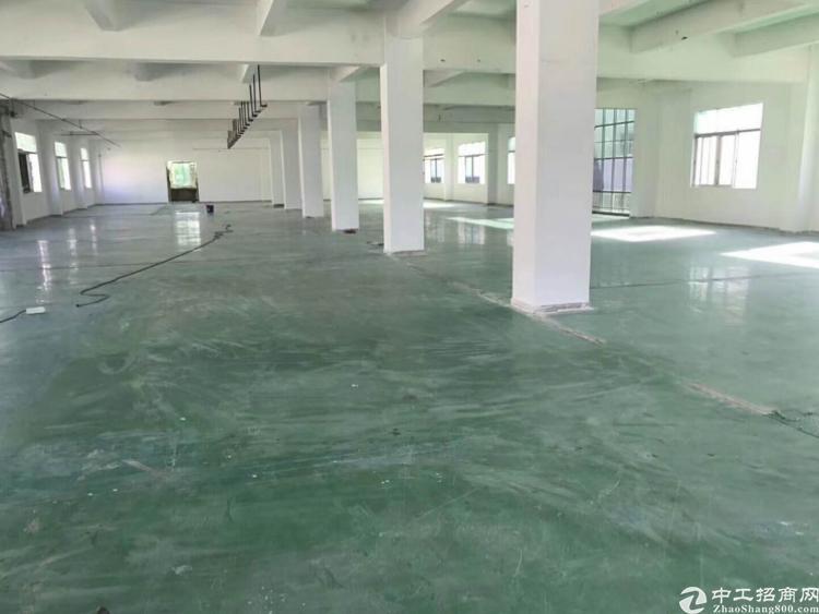樟木头镇樟洋原房东标准厂房一楼1200带装修