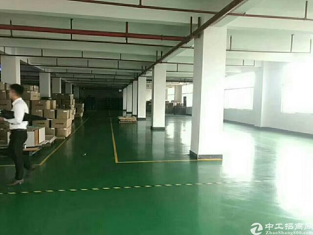 黄江镇独门独院厂房招租-图2