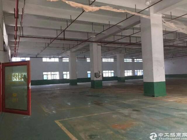 沙井沙一新出一楼环保厂房1600平方可分租-图2
