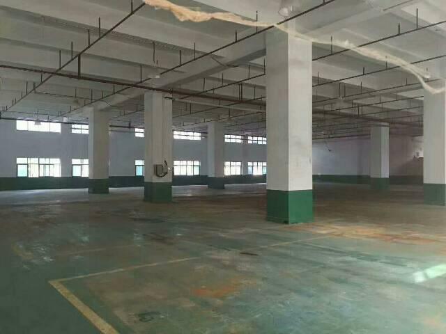 沙井沙一新出一楼环保厂房1600平方可分租-图4