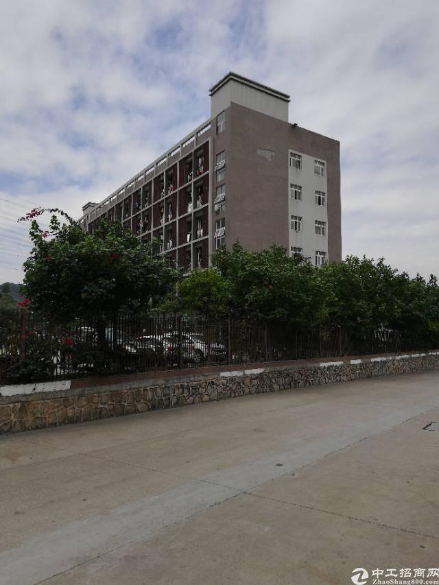 深圳公明新区建筑5.2万平米双证齐全急卖